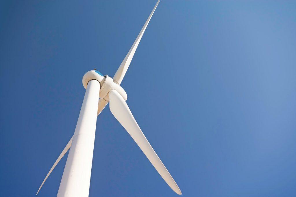 wind- _